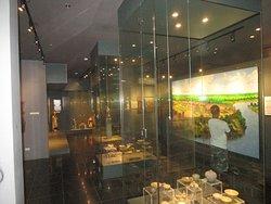 Xavier Museum