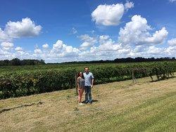 Still Pond Vineyard and Winery