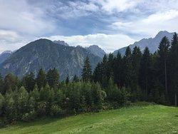 Lienzer Bergbahnen/ Osttirodler Alpine Coaster