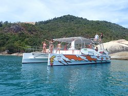 Seahorse Catamaran