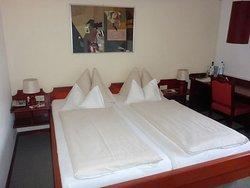 Hotel Maxlhaid
