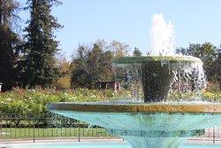 圣何塞市立玫瑰园