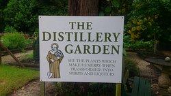 Distillery Botanica