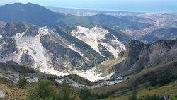 Campocecina Carrara Ms