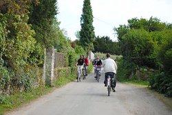 L'Ile à Vélo