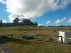 Mowbray Park Farm - Day Visits