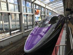 500 Type Eva (Shinkansen Evangelion Project)
