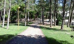Parco Fucoli