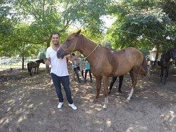 Quinta do Fijó