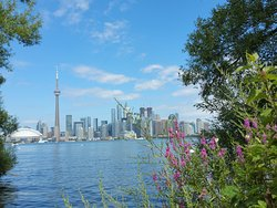 Toronto from Centre Island by day