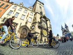 Yellow Zebra Segways & Bikes