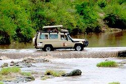 Tanzania Safari Supremacy