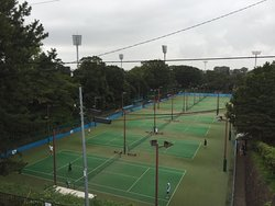 三ツ沢公園