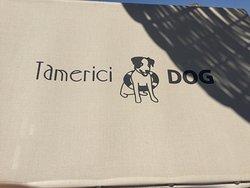 Bagno Tamerici Dog