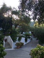 Olive Grove Studios