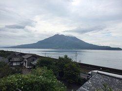 桜島を眺めるのに良かった!