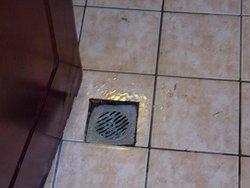 stinky drainage