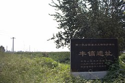 Western Zhou Chariot Burial Pit