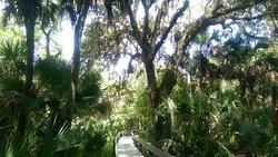 Brevard County Erna Nixon Park