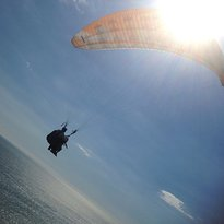 Butterfly Paragliding