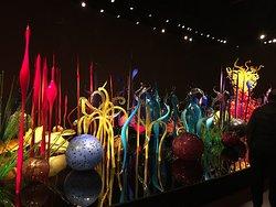 Beautiful display!