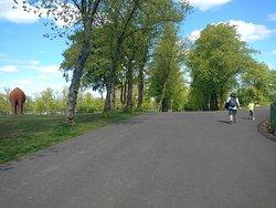 Large paths to walk or to ride a bike