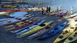 Deep Cove Kayak