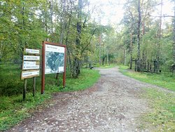 Harku Forest Nature Trail