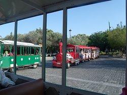 Sunshine Express Day Tours