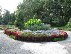 Botanical Garden UMTS