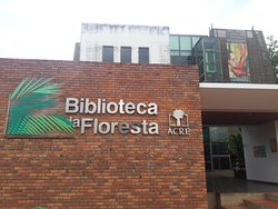 Biblioteca Da Floresta