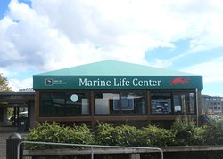 Marine Life Center