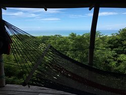 Suspendu entre la forêt tropicale et les déferlantes du Pacifique