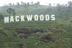 Mackwoods Tea Centre