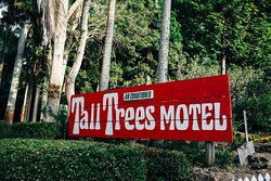 Tall Trees Motel
