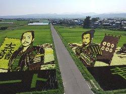 Inakadate Mura Tanbo Art