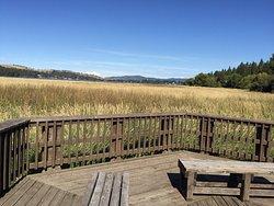 Liberty Lake Regional Park