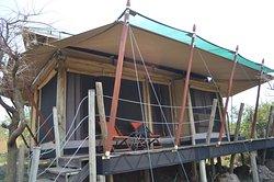 Tent #5