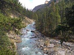 Beauty Creek Trail