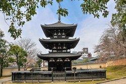 Nara Japan (215696044)