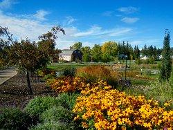 Olds College Botanic Gardens & Constructed Wetlands
