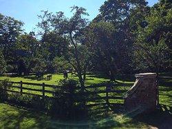 Applecore Cottage
