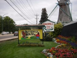 Windmill Garden Centre