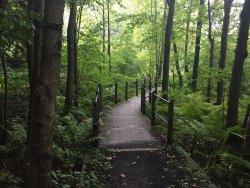 Pigeon Creek County Park