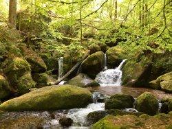Gertelbachwasserfaelle