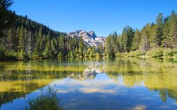 Gold Lake