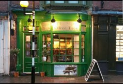 The New Olive Tree