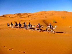 Berber Camp Merzouga