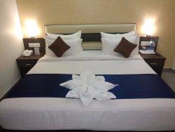 OYO 6090 Hotel Park View Premium