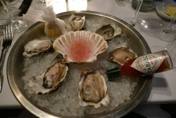 Luscious Oban Oysters